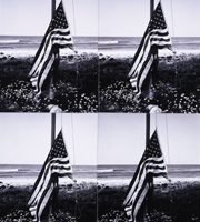 Jon Gould with American Flag, Andy Warhol